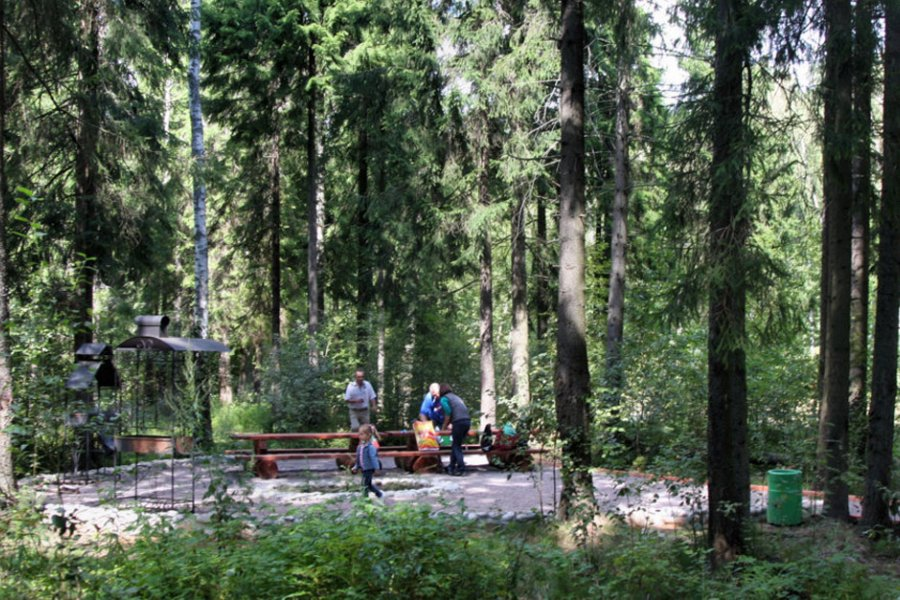 Крюковский лесопарк сохранит количество пикниковых точек