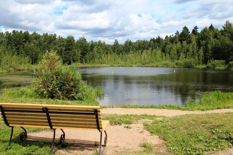 Зеленоградцев приглашают на экологический праздник – День Черного озера