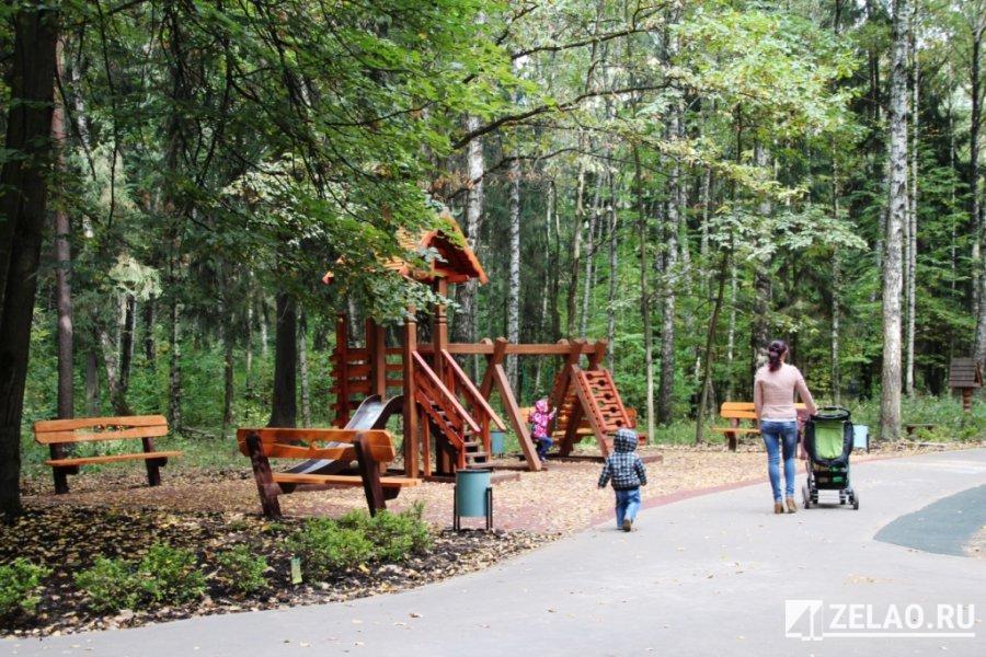 Более половины лесопарковых дорожек в Зеленограде прошли капитальный ремонт