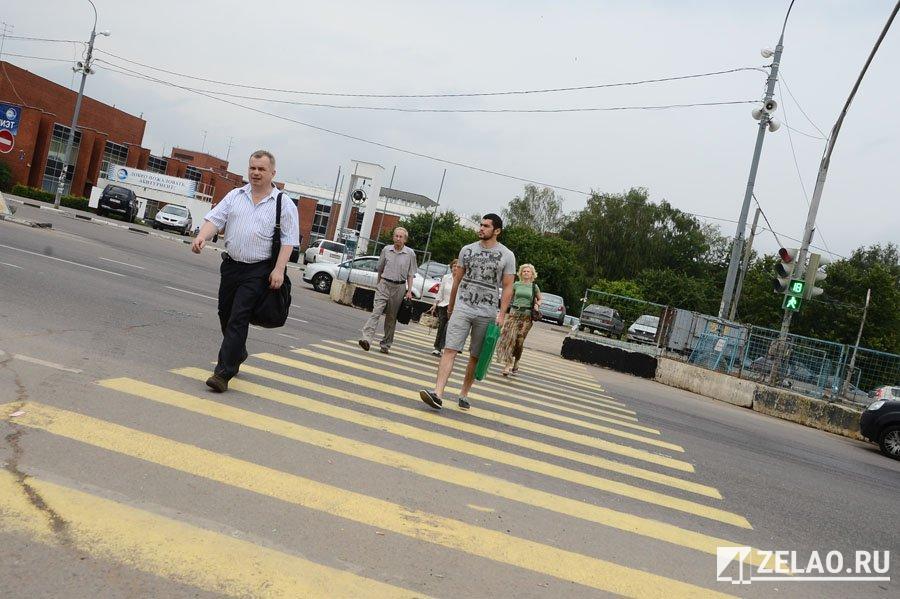 За один день рейда «Пешеходный переход» дорожная полиция составила более 60 административных материалов