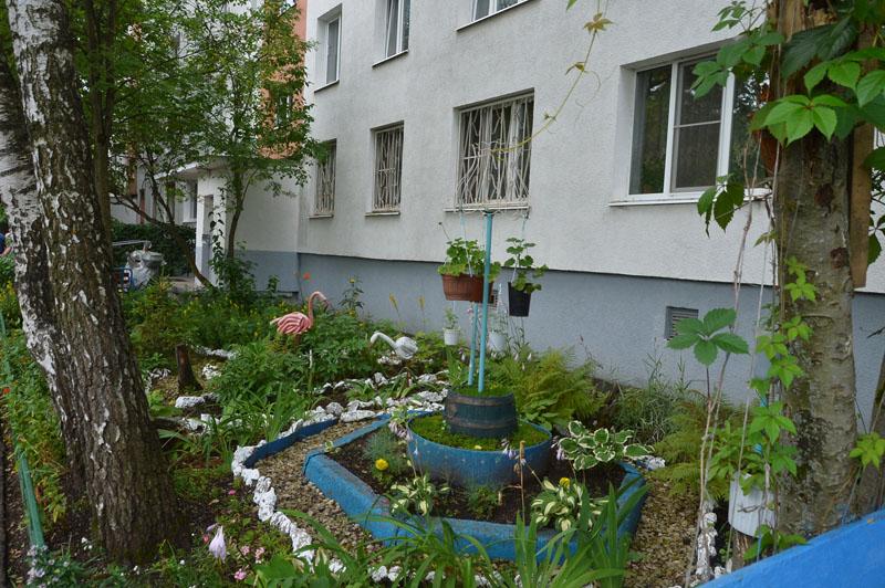 Конкурс благоустройства «Зеленоградский дворик» будет продолжен и в следующем году